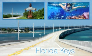 dental implant courses florida
